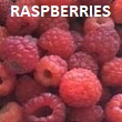 Pick-Your-Own Raspberries